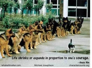 Courage-life-shrinks-or-expands-e1363646261913